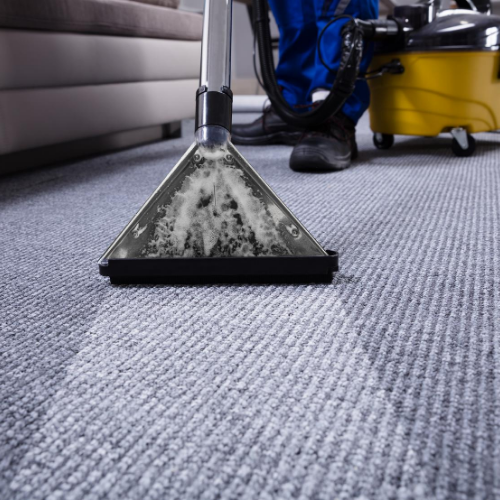 Carpet Cleaning Services in Finchley