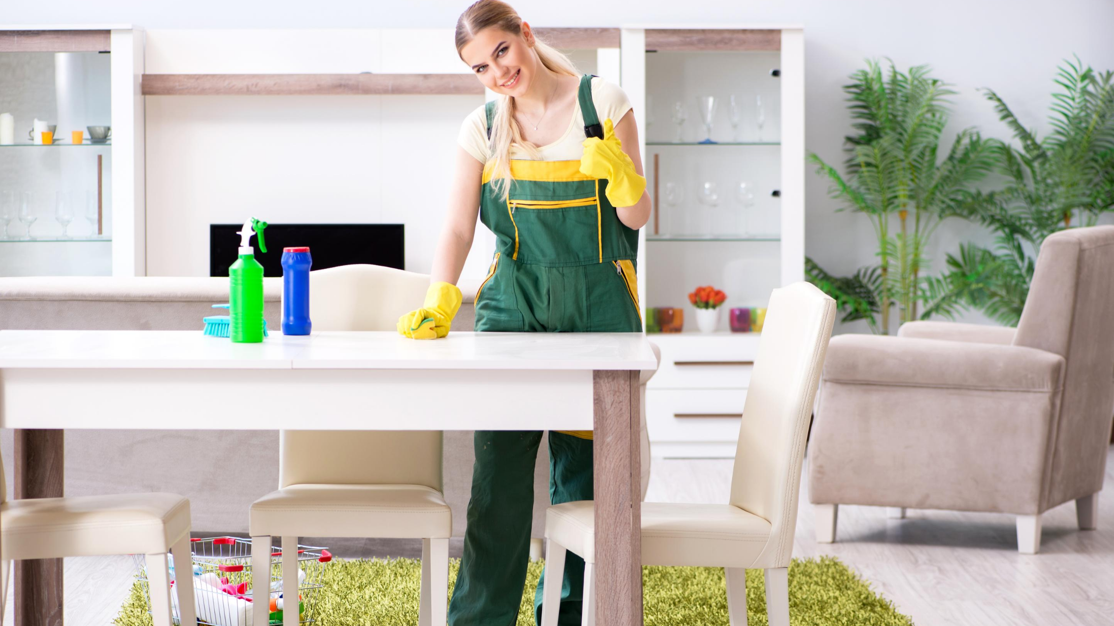 Domestic cleaners near me