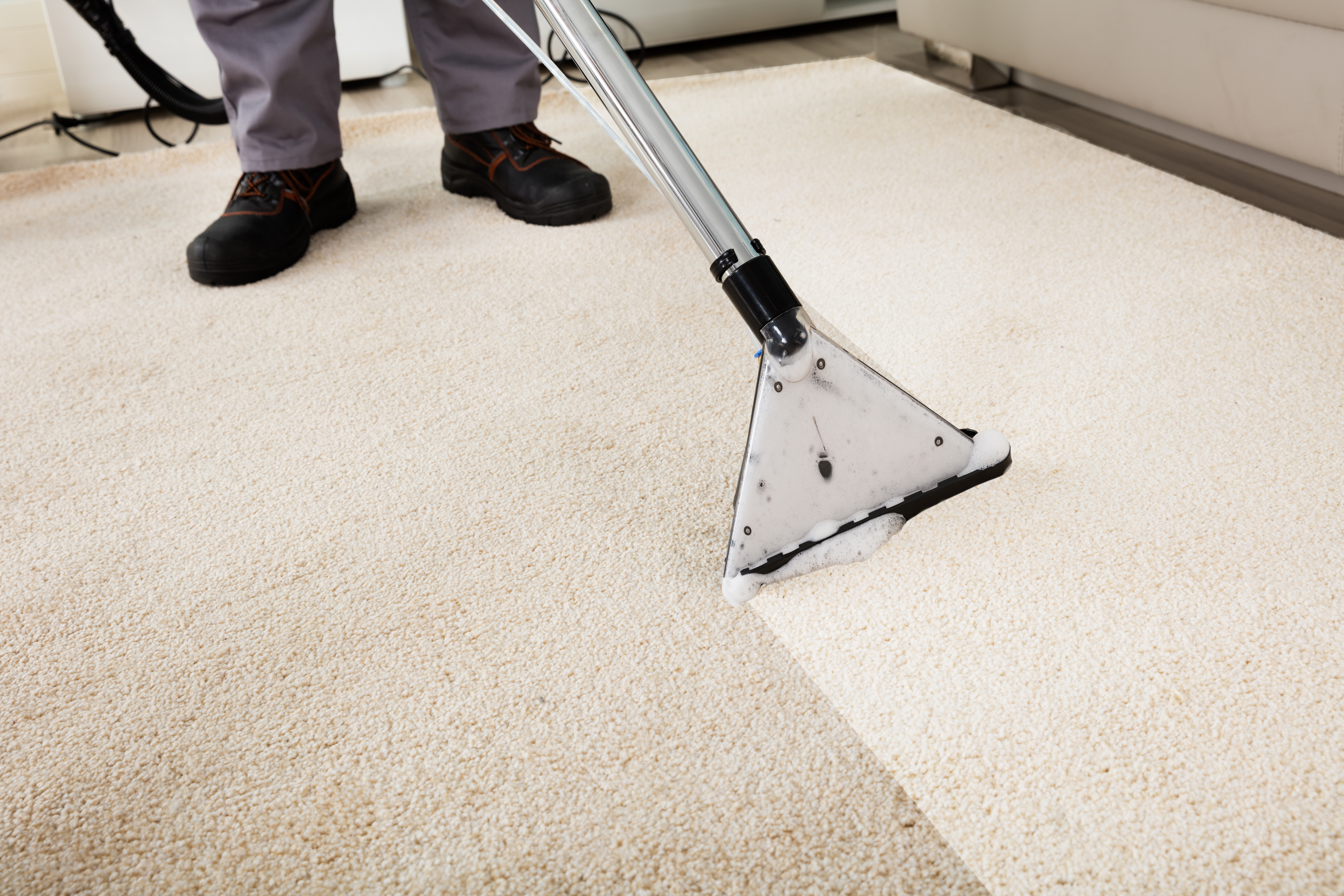 Carpet Cleaners West Hampstead (1)