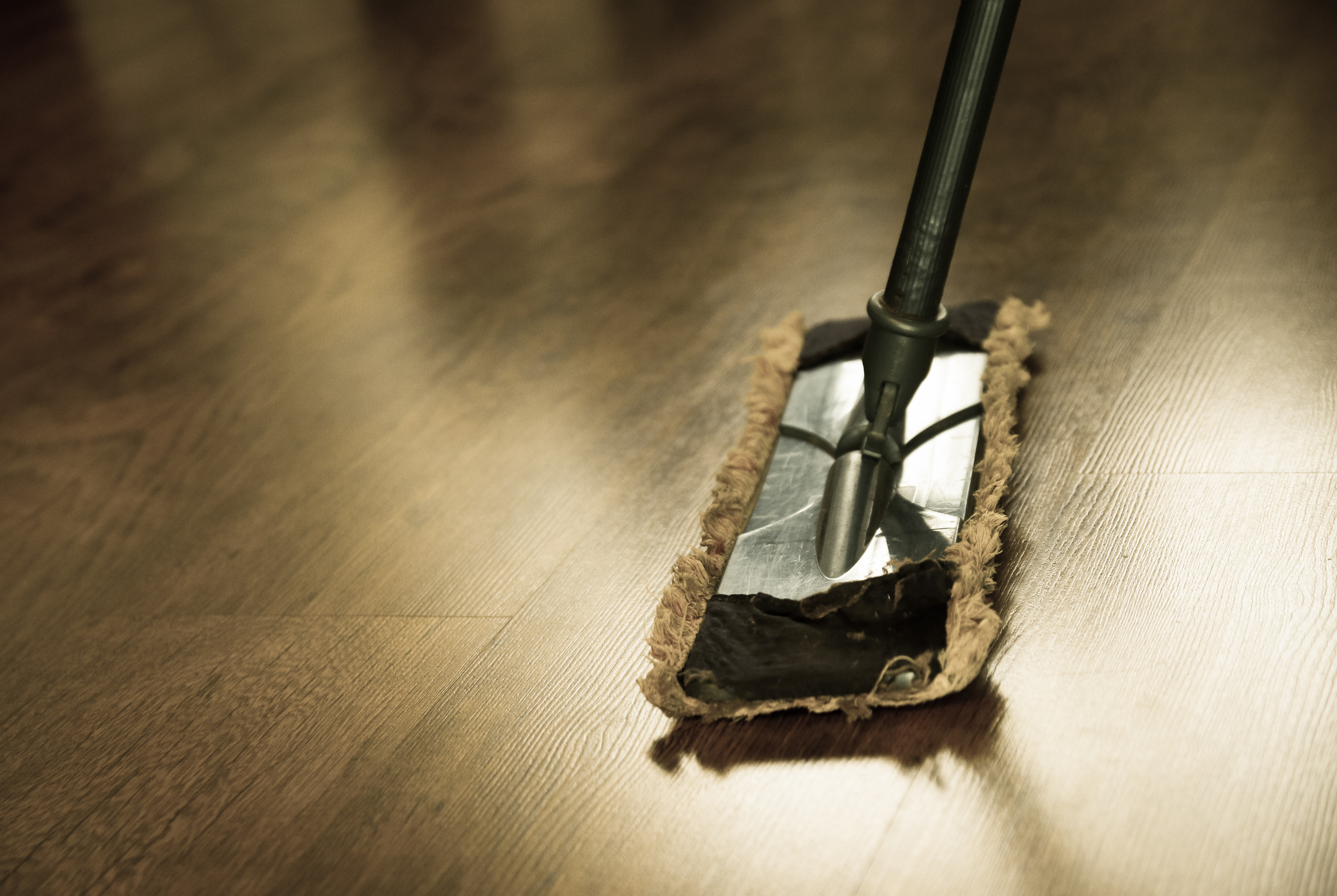 carpet Cleaning Services in N1