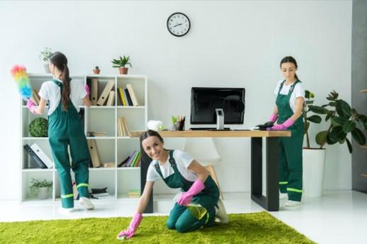 Carpet cleaning Services Wimbledon SW19